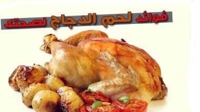 صورة فوائد الدجاج للحامل