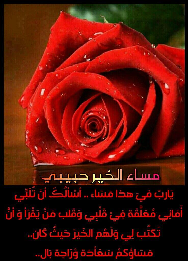 مساء الخير حبيبتي صور مساء الخير رومانسية للحبيب مجلة رجيم