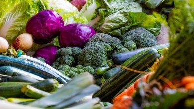 صورة أهم 7 أطعمة غنية بالسيليكون
