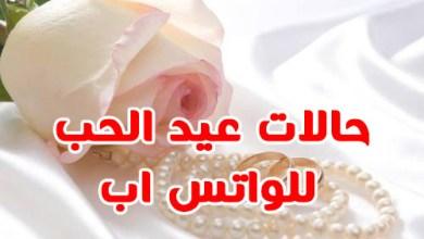 Photo of حالات ومسجات واتس اب بمناسبة عيد الحب