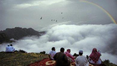 صورة أبرز 5 مزارات سياحية شهيرة في مدينة أبها