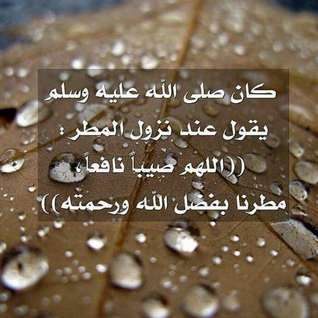 المطر . 1