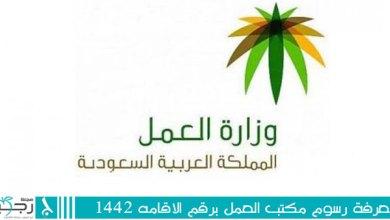 Photo of معرفة رسوم مكتب العمل برقم الاقامه 1442