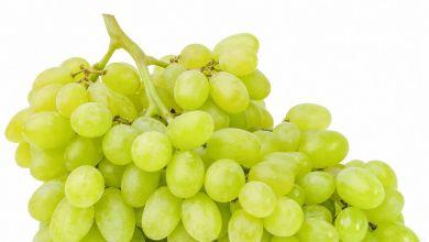 صورة فوائد العنب الاخضر
