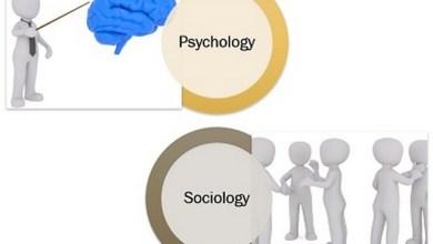 صورة اذكر بالتفصيل نوع المجال في علم النفس وعلم الاجتماع