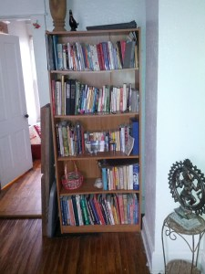 Just one of the five bookshelves that used to fill my house.