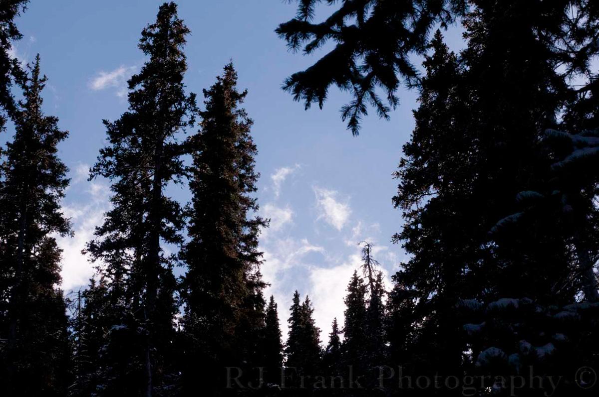 WolfCreek_RJFPHOTO_11_11-21