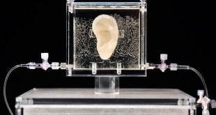 3D печать ухо