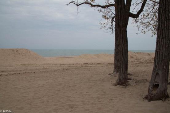 Indiana Dunes_
