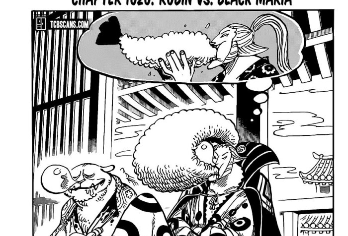 One Piece Chapter 1020 Cover Page