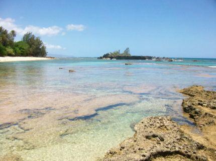 Hawaii Vacation - Ocean Shoreline