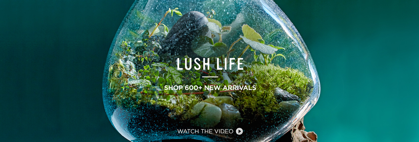 Lush Life - Shop 600+ New Arrivals