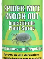 Spider Mite Knock Out Pint (12/