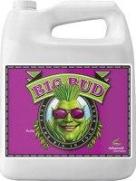 Big Bud Organic -OIM 1Gal