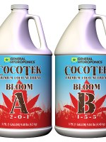 GH Cocotek Bloom A Gallon (4/Cs