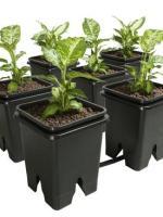 Grow Flow Expansion Kit – 5G