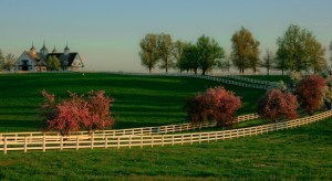 Lexington_Ky_Manchester_Farm