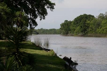 Bayou entourant Avery Island