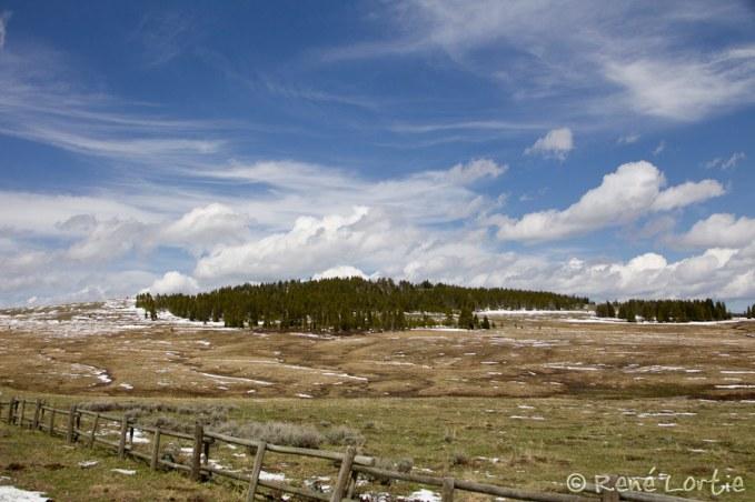Sommet des montagnes Bighorns (9000 pieds d'altitude après avoir serpenté dans des courbes vertigineuses)