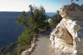 Sentier Bright Angel Point