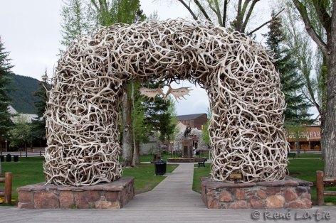 Jackson (une des arches de l'entrée d'un parc faite de véritables bois de wapitis)