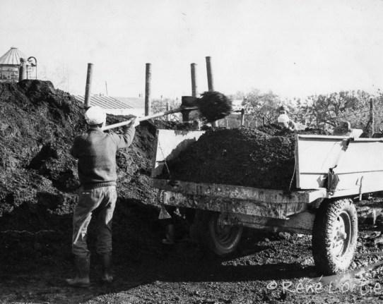 Les travail sur la ferme communale