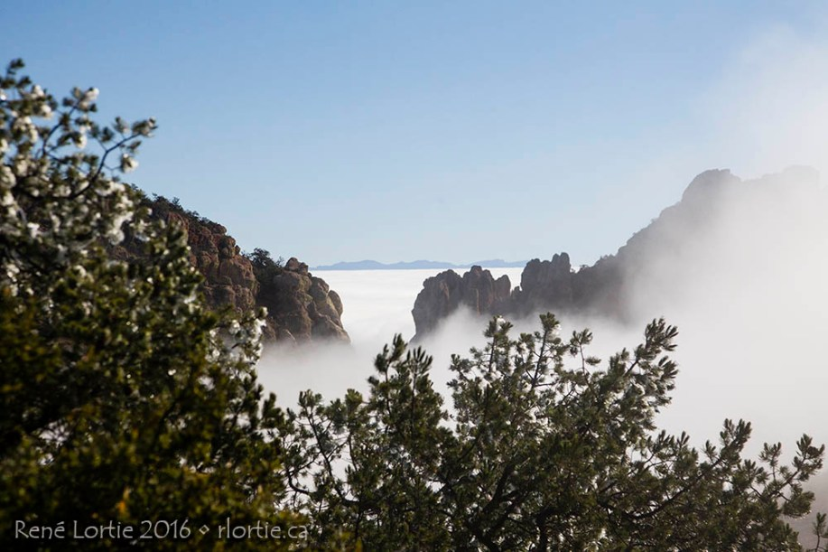 Le paysage au-dessus des nuages du Lost Mine Trail