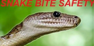 snake bite safety rls