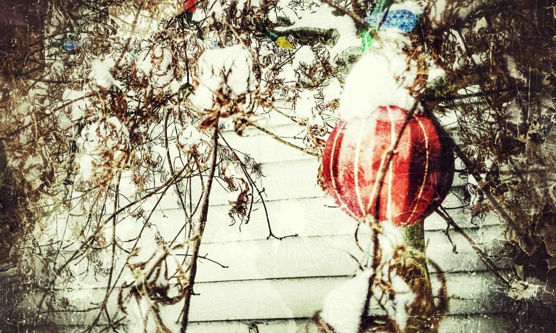 December 2014 Christmas (24)