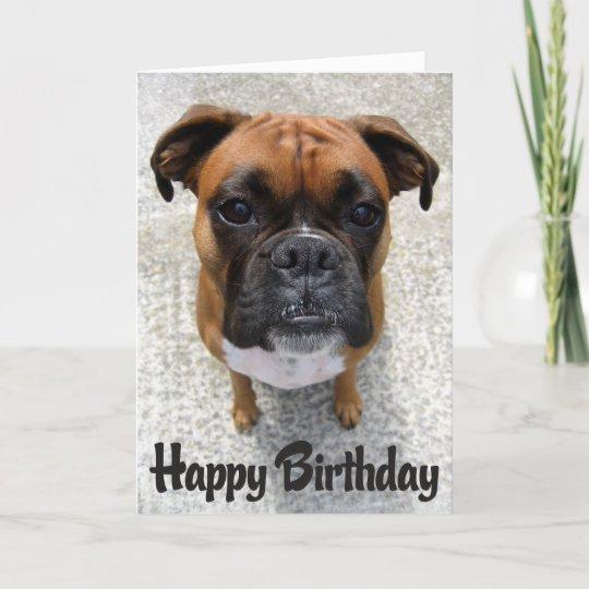 Boxer Puppy Dog Happy Birthday Card Verse Zazzle Ca