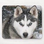 Siberian Husky Puppy Dog In Snow Mousepad Zazzle Ca