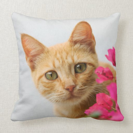 Tabby Kitten Cushion