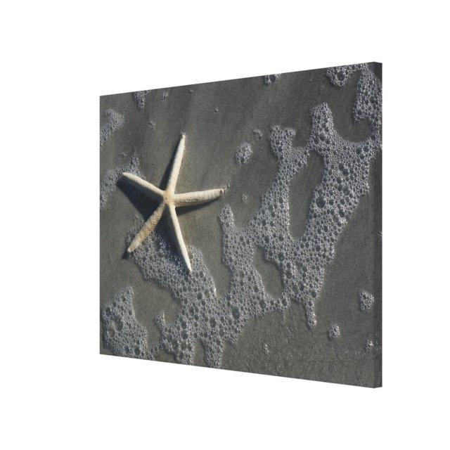 Beach Starfish Canvas Print