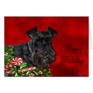 Schnauzer Christmas Cards Amp Invitations