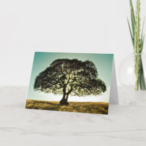 Condolences Card with Tree