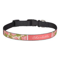 Coral and Blush Vintage Roses Monogram Dog Collar