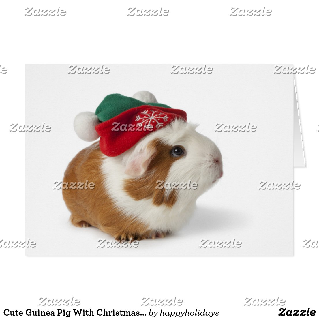 Cute Guinea Pig With Christmas Hat On White