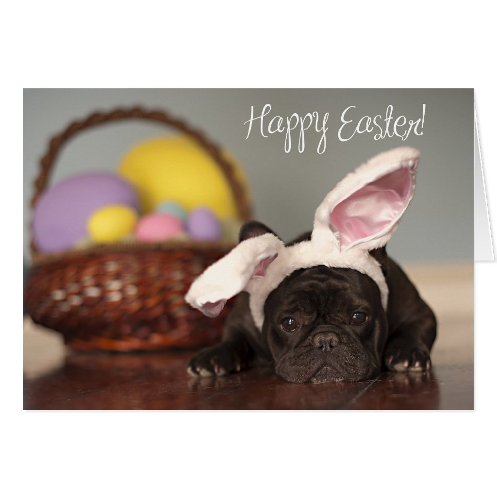 French Bulldog Easter Card!