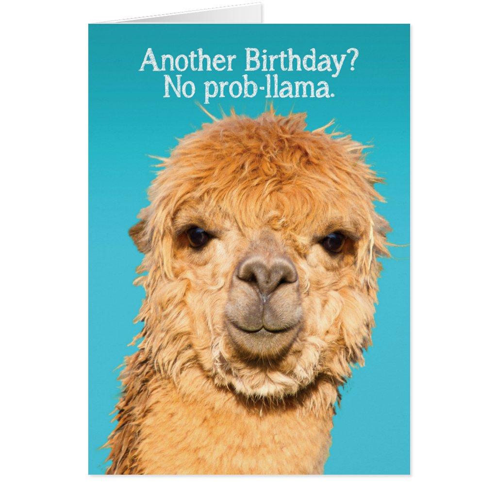Funny No Problama Llama Birthday Card