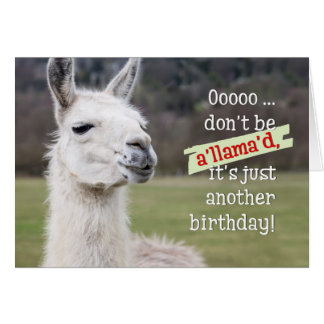 Humorous Cards Amp Invitations
