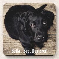 Black Lab Dog Coaster
