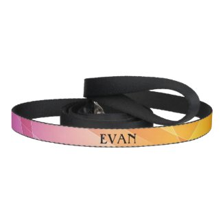 Pink Pattern Dog Leash