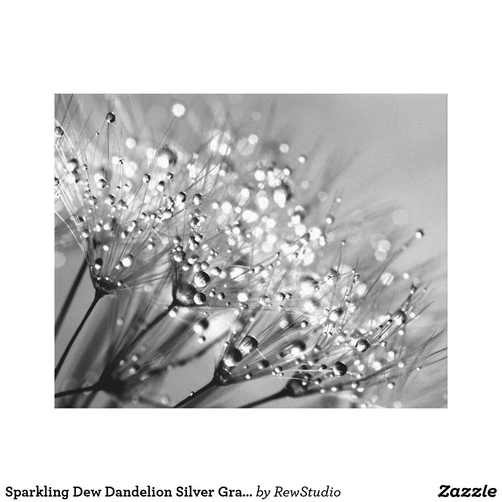 Sparkling Dew Dandelion Canvas Print