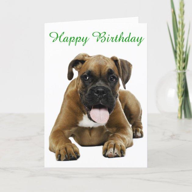 Boxer Puppy Dog Happy Birthday Card Verse Zazzle Com Au