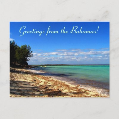 Greetings from the Bahamas! Postcard by awhitelaw