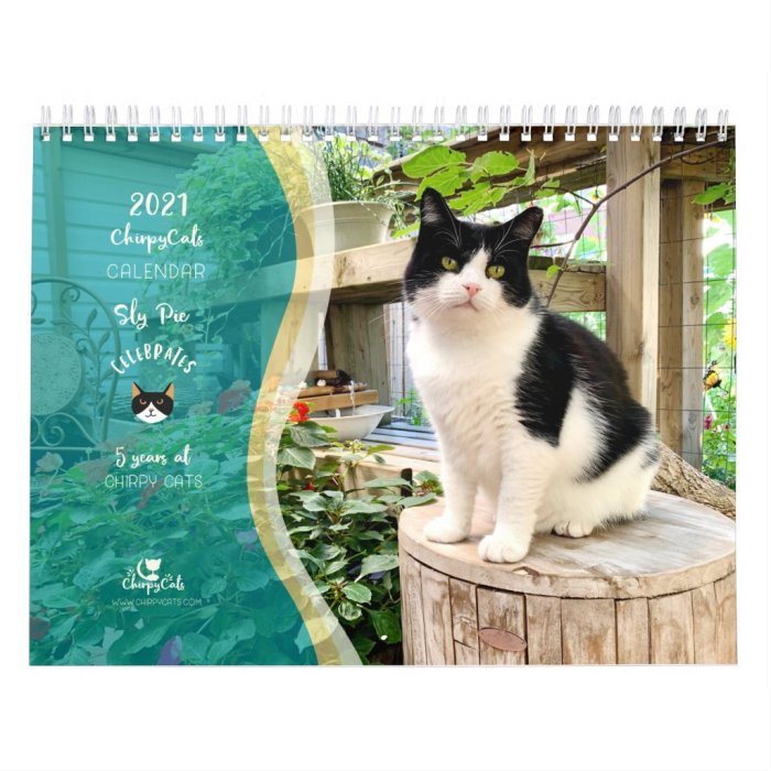 2021 Cat Wall Calendar, Life of Sly Pie Calendar