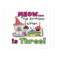 3rd Kitten Birthday T-shirts and Gifts Postcard