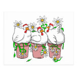 Fun Chicken In Every Pot Postcard