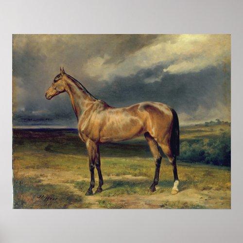 Abdul Medschid' the chestnut arab horse, 1855 print