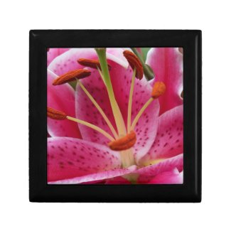 Abstract Pink Lily Gift Box